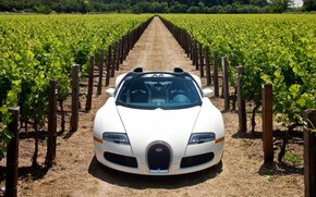 Bugatti Veyron 16.4 Grand Sport 2010 in Napa Valley - Front 2 wallpaper