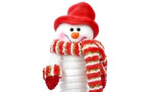Custom Christmas Snowman