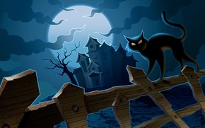 Cat in Halloween Night wallpaper