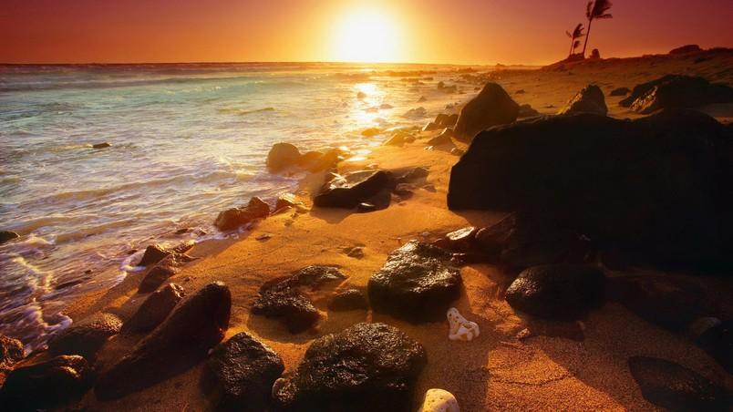 Captivating Summer Beautiful Sunset Wallpaper
