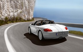 Porsche Boxster S 2009 Rear wallpaper