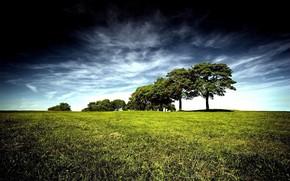 Beautiful Nature HD Landscape