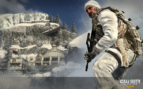Call of Duty Black Ops Winter wallpaper