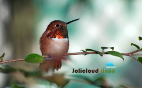 Jolicloud Linux Hummingbird wallpaper