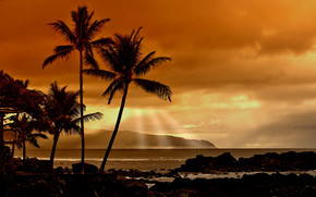 Sunset in the Tropics wallpaper