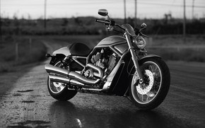 Black Harley Davidson wallpaper