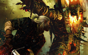 The Witcher 2 Character