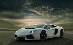 Superb Lamborghini Aventador