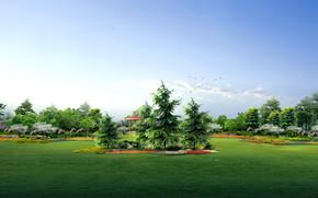 My green garden