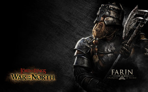 Farin Champion of Erebor wallpaper