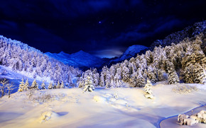 Blue Winter Night wallpaper
