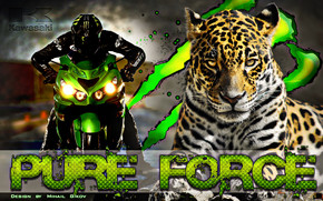 Kawasaki Pure Force wallpaper