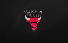 The Chicago Bulls wallpaper