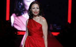 Ann Curry Red Dress wallpaper