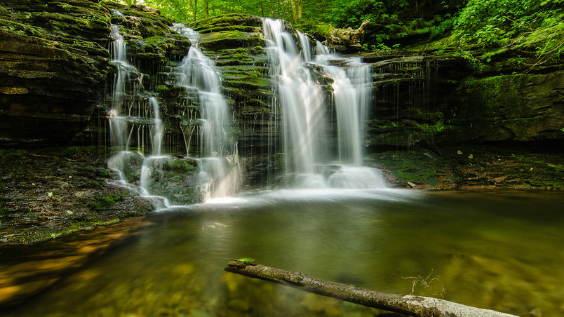 Green Forest Waterfalls wallpaper