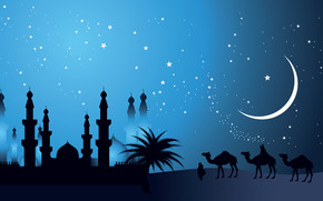 Camels in The Night wallpaper