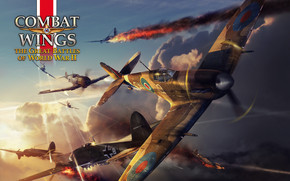 Combat Wings Game