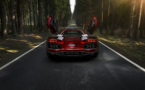 Rear of Mansory Aventador LP700 wallpaper