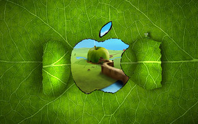 Apple Logo Window wallpaper