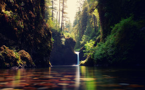 Forest Cascade Landscape wallpaper
