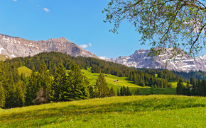Switzerland Green Mountains wallpaper