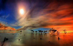 Game of Colors Landscape