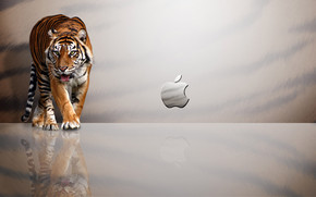 Tiger Apple wallpaper