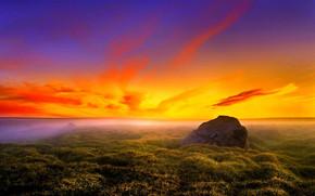 The Fire Sunset