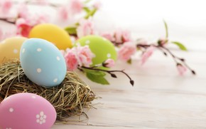 Easter Time Eggs wallpaper