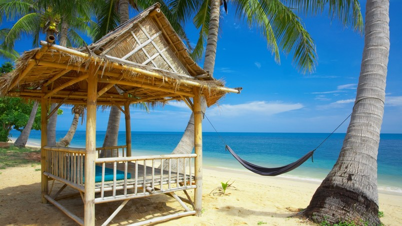 Exotic Beach and Accessories wallpaper