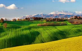 Green Field Landscape wallpaper