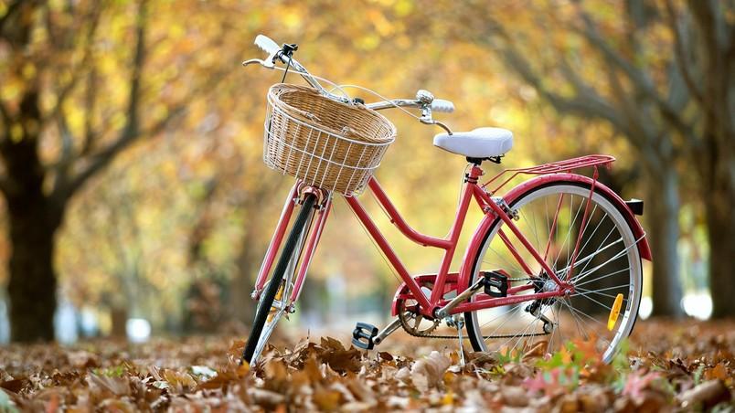 Red Classic Bike HD Wallpaper  WallpaperFX