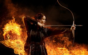 The Hunger Games 2013 wallpaper