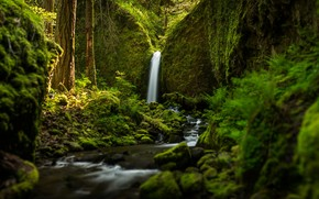 Ruckel Creek Falls wallpaper