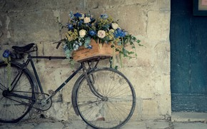 Bicycle Flower Support wallpaper