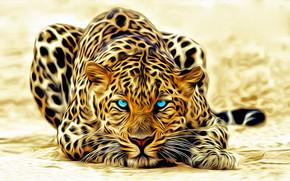 Stunning Leopard
