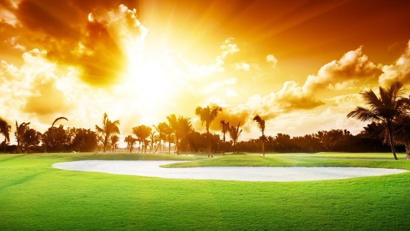 Bright Sunshine HD Wallpaper