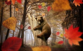 Cute Little Bear Playing wallpaper