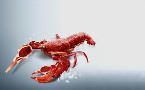 Meat Crab