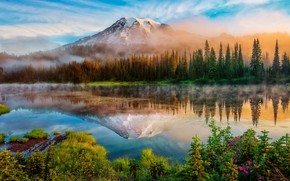 Mount Rainier Landscape wallpaper