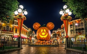 Mickey Mouse Pumpkin wallpaper