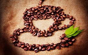 Coffee Seeds Cup wallpaper