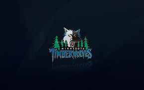 Minnesota Timberwolves Logo wallpaper