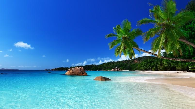 Tropical Island Beach Landscape Wallpaper