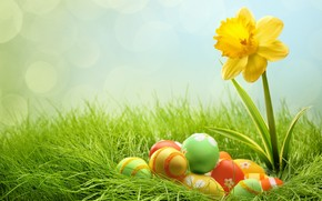 2014 Easter Eggs wallpaper