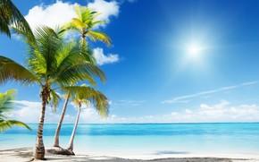 Stunning Paradise Corner
