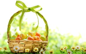 2014 Easter Basket Idea wallpaper
