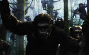 Dawn of the Planet of the Apes Movie wallpaper