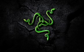 Razer Brand Logo wallpaper
