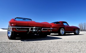 Red Gorgeous Chevrolet Corvette wallpaper